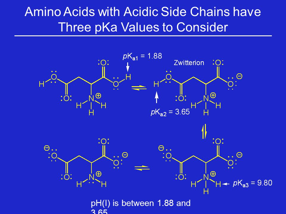 Amino Acids with Acidic Side Chains have Three pKa Values to Consider