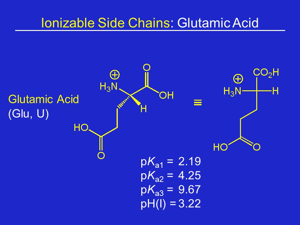 Ionizable Side Chains: Glutamic Acid