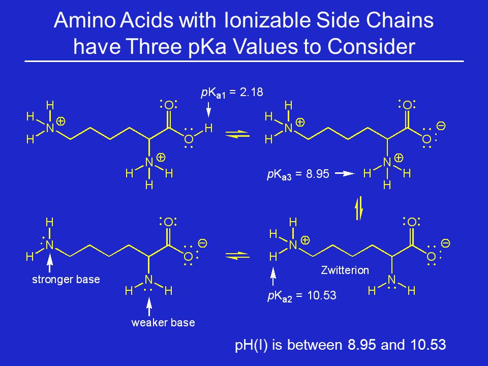 Amino Acids with Ionizable Side Chains have Three pKa Values to Consider