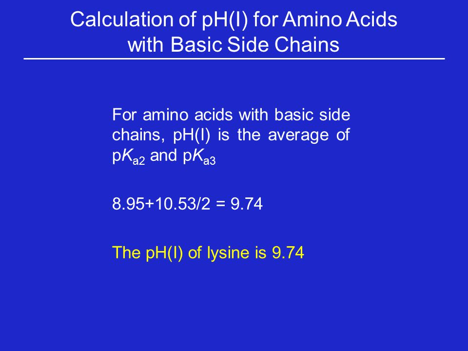 Calculation of pH(I) for Amino Acids with Basic Side Chains