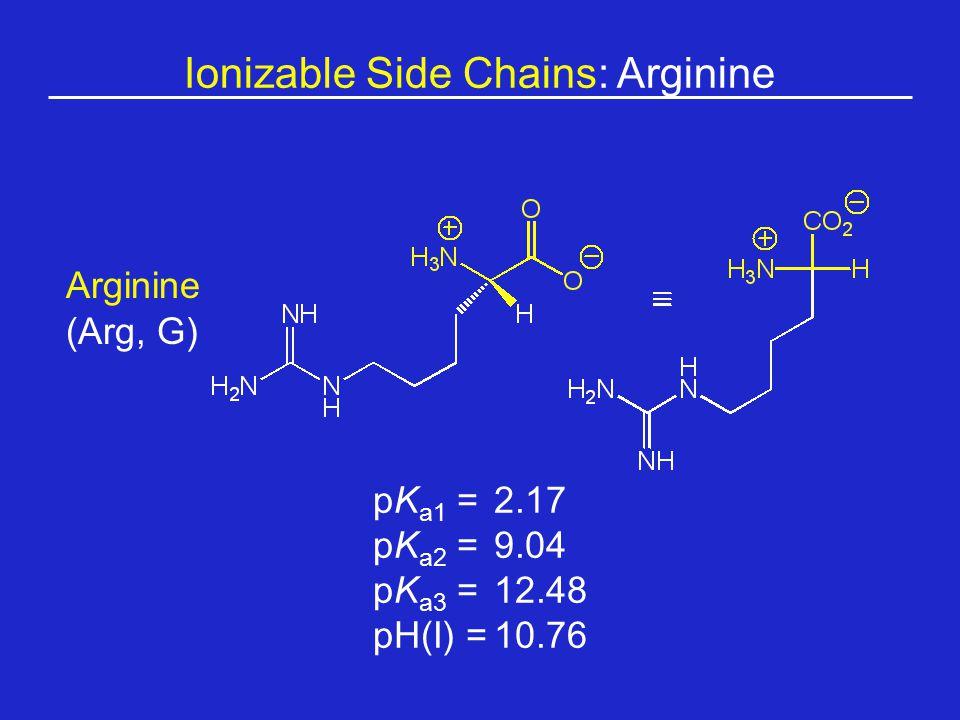 Ionizable Side Chains: Arginine
