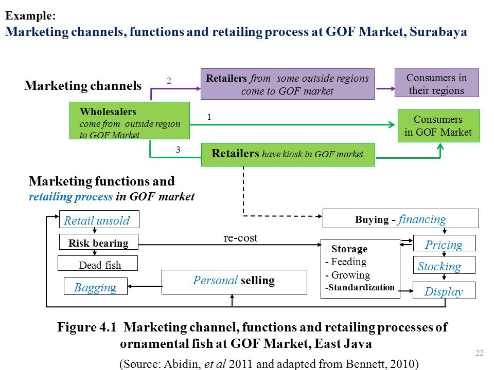 Marketing functions and retailing process in GOF market