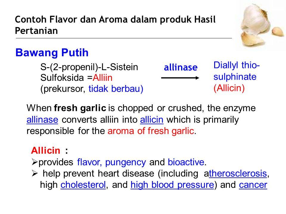 Bawang Putih Contoh Flavor dan Aroma dalam produk Hasil Pertanian