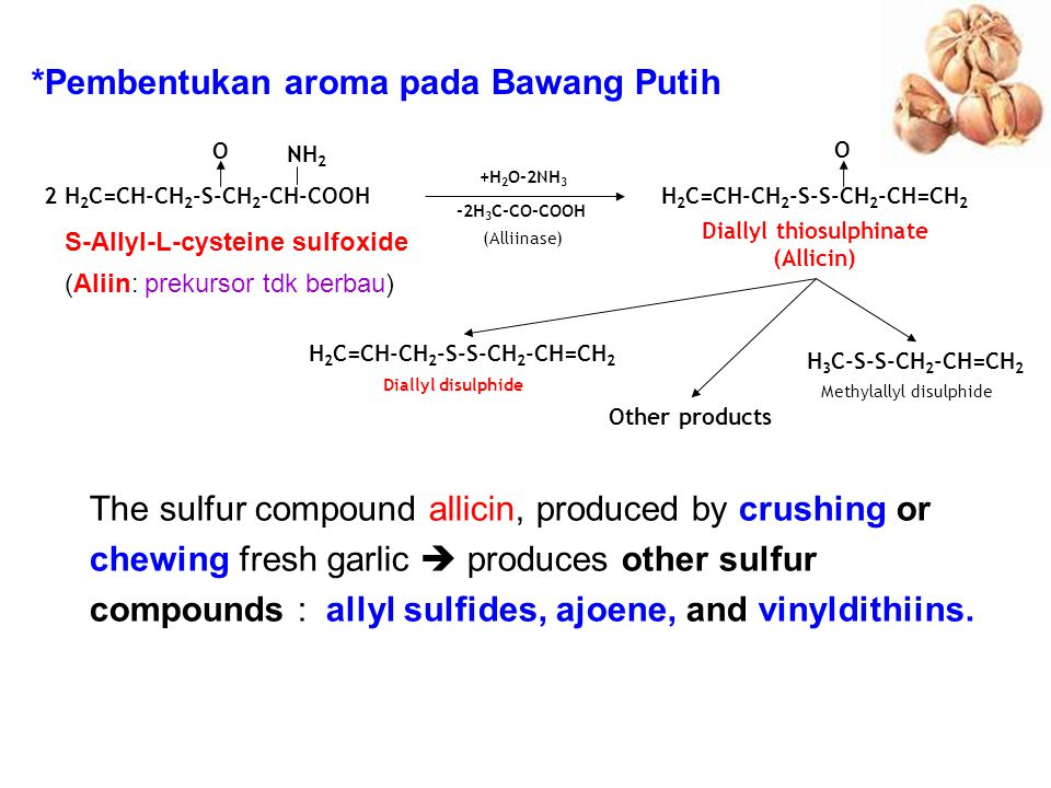 Diallyl thiosulphinate (Allicin) H2C=CH-CH2-S-S-CH2-CH=CH2