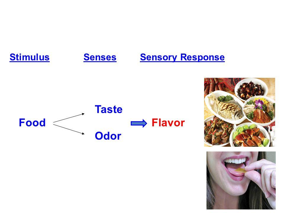 Stimulus Senses Sensory Response