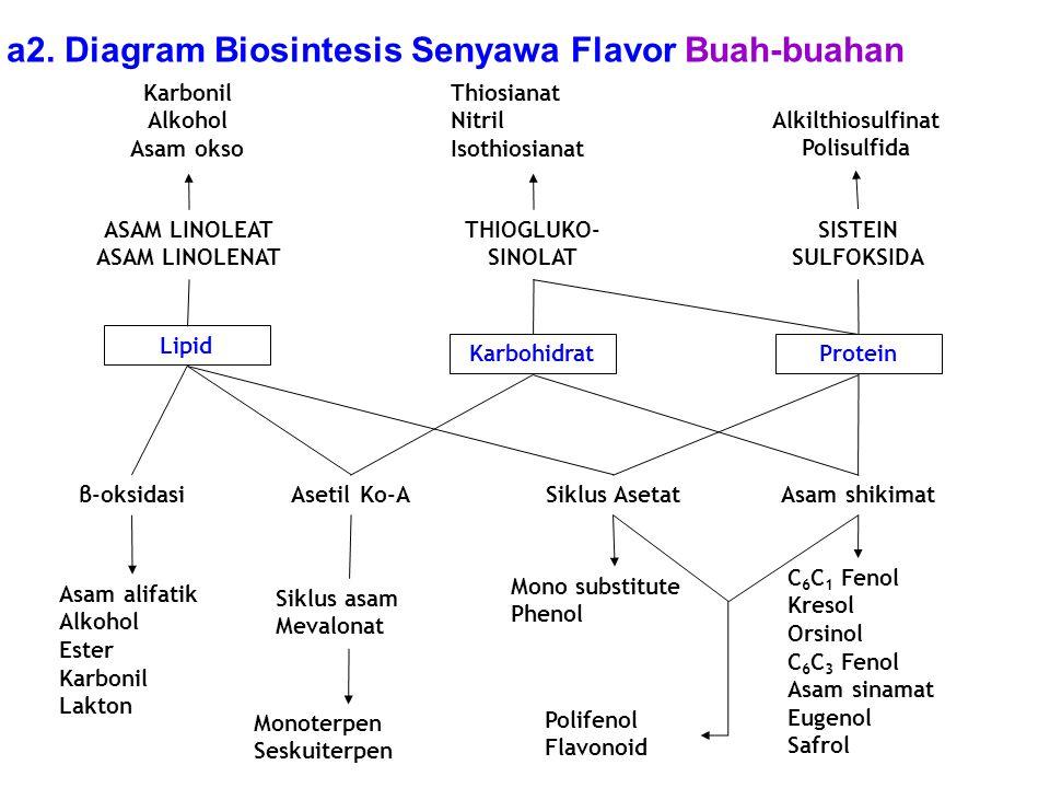 Flavor perisa kuliah ke ix mk satuan proses ppt download diagram biosintesis senyawa flavor buah buahan ccuart Gallery