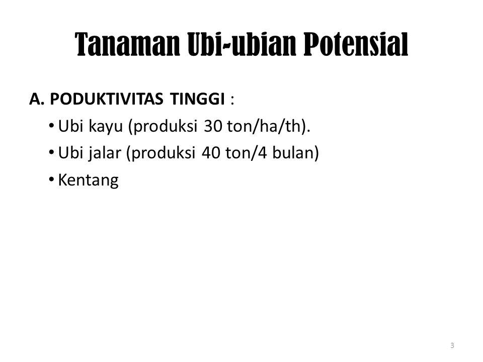 Tanaman Ubi-ubian Potensial
