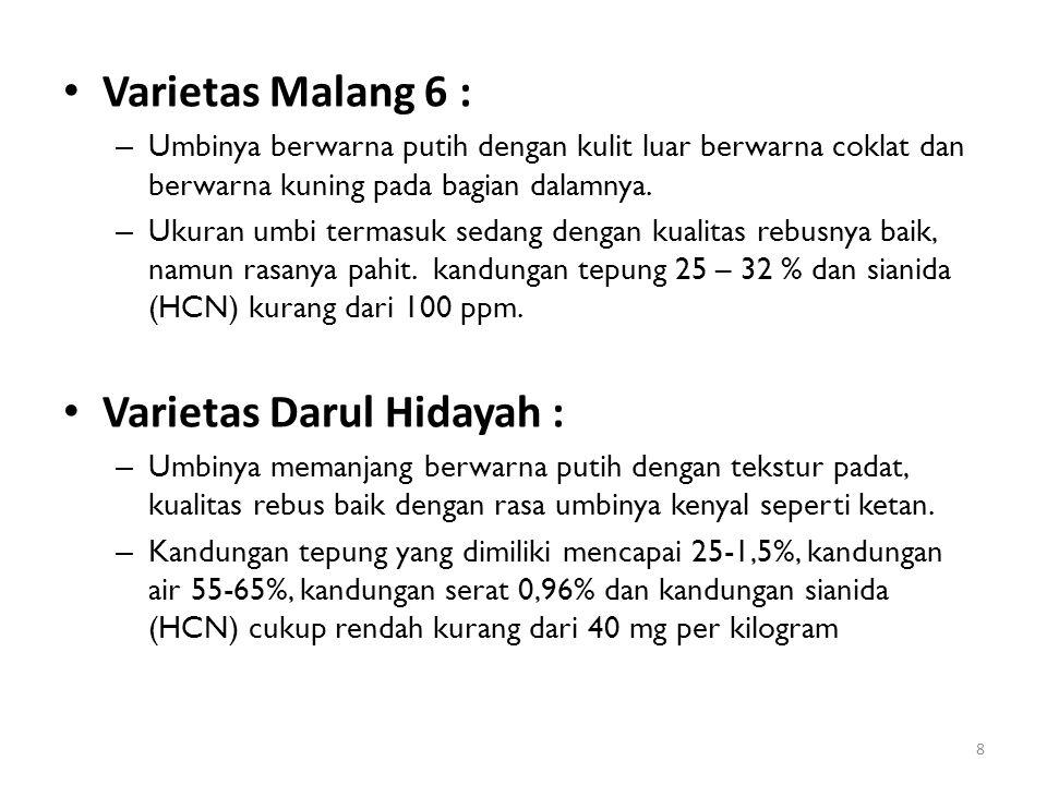 Varietas Darul Hidayah :
