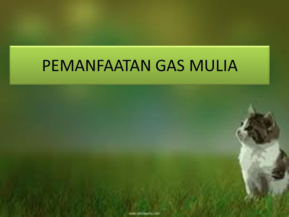 PEMANFAATAN GAS MULIA
