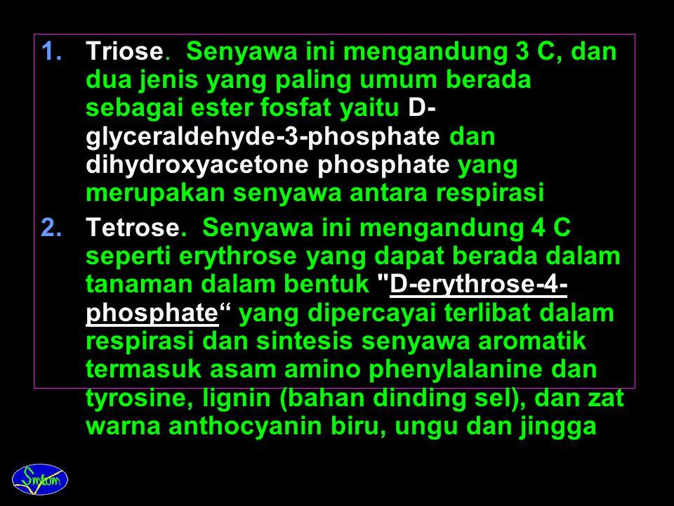 Triose. Senyawa ini mengandung 3 C, dan dua jenis yang paling umum berada sebagai ester fosfat yaitu D-glyceraldehyde-3-phosphate dan dihydroxyacetone phosphate yang merupakan senyawa antara respirasi