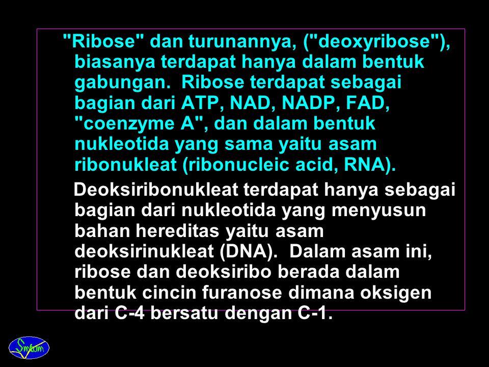 Ribose dan turunannya, ( deoxyribose ), biasanya terdapat hanya dalam bentuk gabungan. Ribose terdapat sebagai bagian dari ATP, NAD, NADP, FAD, coenzyme A , dan dalam bentuk nukleotida yang sama yaitu asam ribonukleat (ribonucleic acid, RNA).