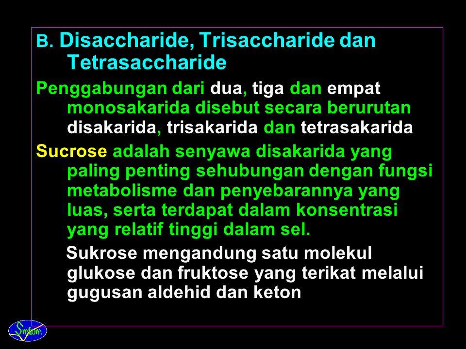 B. Disaccharide, Trisaccharide dan Tetrasaccharide