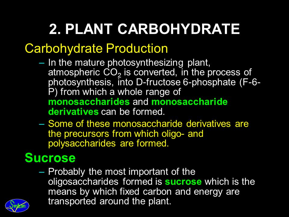2. PLANT CARBOHYDRATE Carbohydrate Production Sucrose