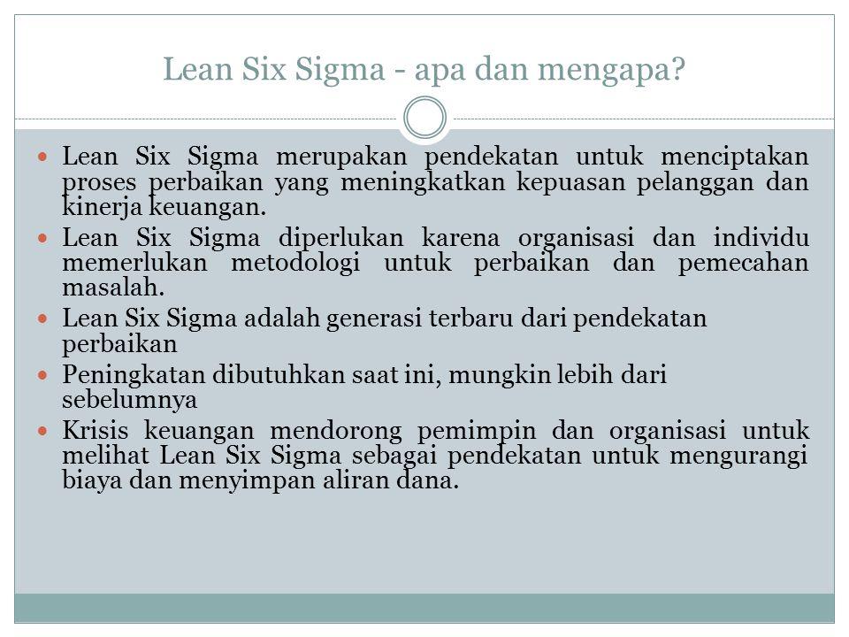 Lean Six Sigma - apa dan mengapa