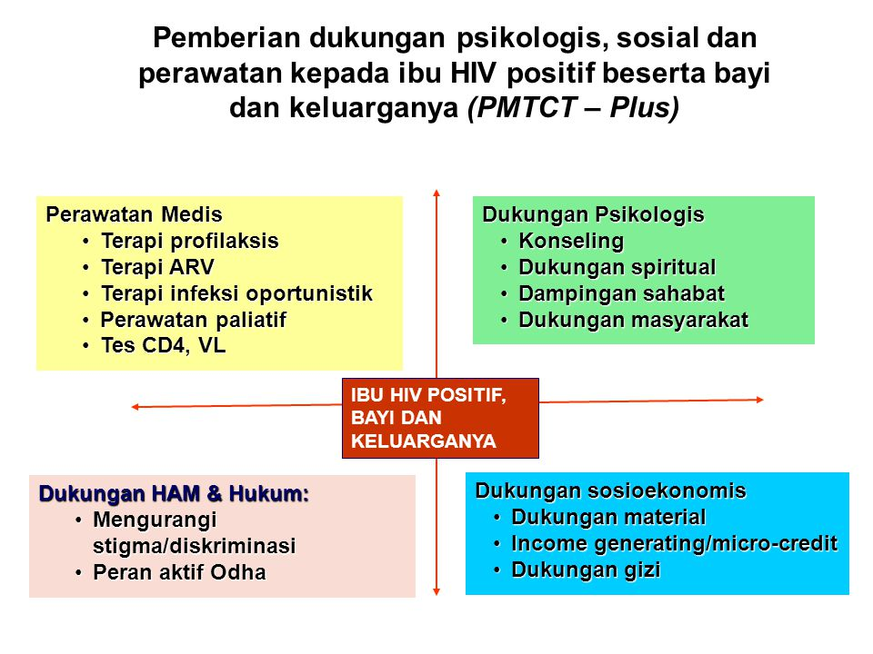 Pemberian dukungan psikologis, sosial dan perawatan kepada ibu HIV positif beserta bayi dan keluarganya (PMTCT – Plus)