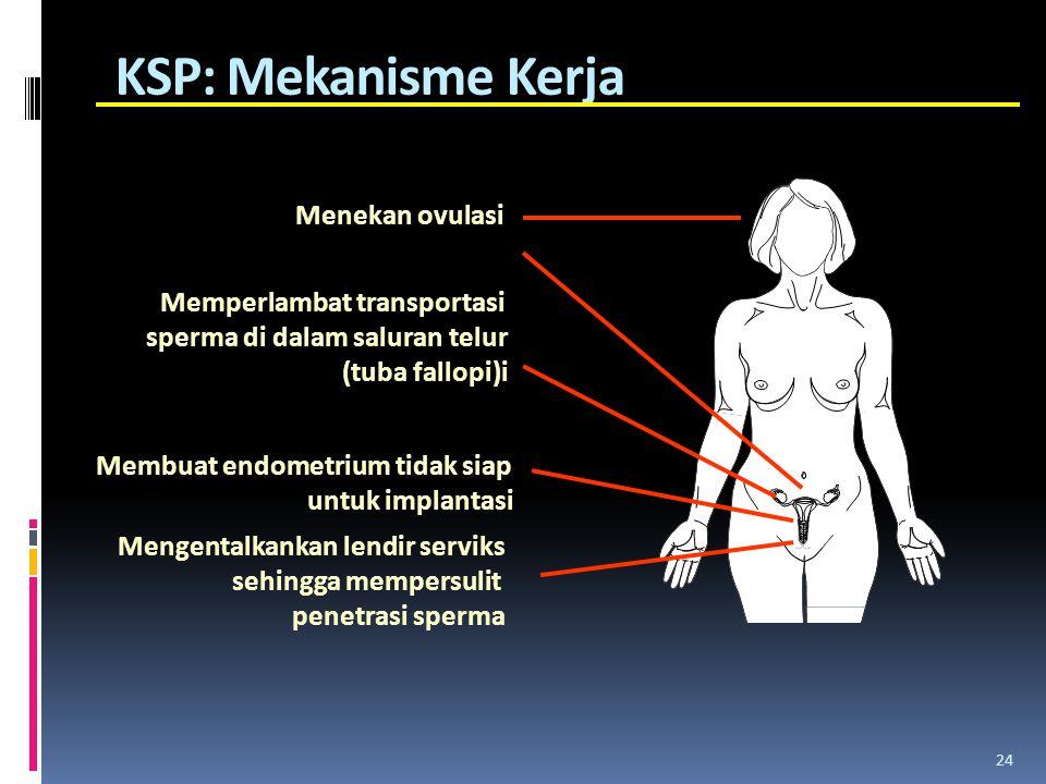 KSP: Mekanisme Kerja Menekan ovulasi Memperlambat transportasi