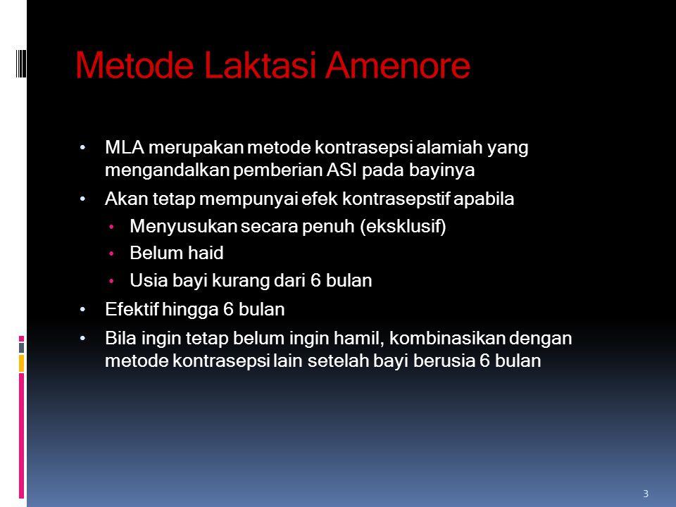 Metode Laktasi Amenore