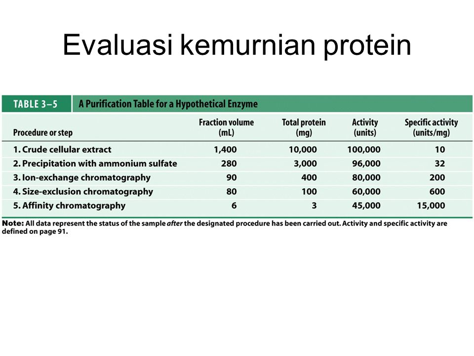 Evaluasi kemurnian protein