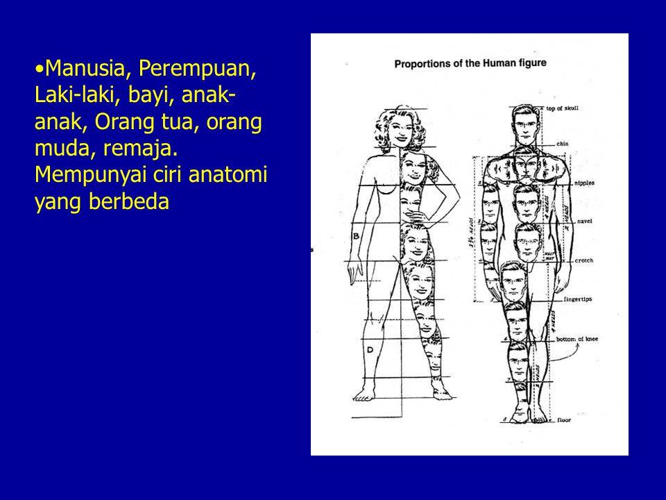 Manusia, Perempuan, Laki-laki, bayi, anak-anak, Orang tua, orang muda, remaja.