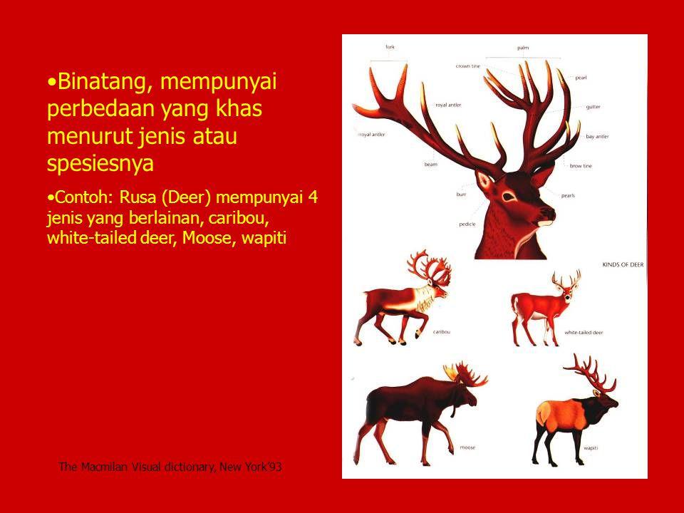 Binatang, mempunyai perbedaan yang khas menurut jenis atau spesiesnya