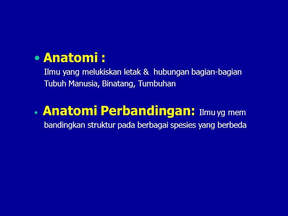 Anatomi : Ilmu yang melukiskan letak & hubungan bagian-bagian