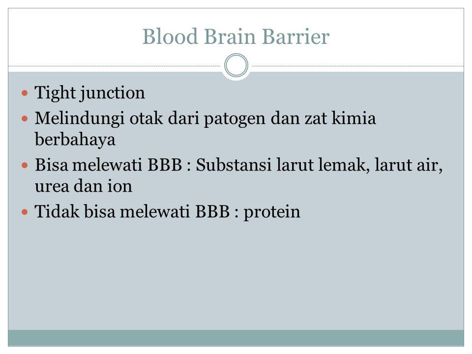 Blood Brain Barrier Tight junction