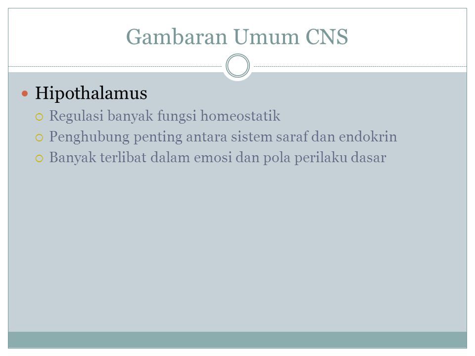 Gambaran Umum CNS Hipothalamus Regulasi banyak fungsi homeostatik