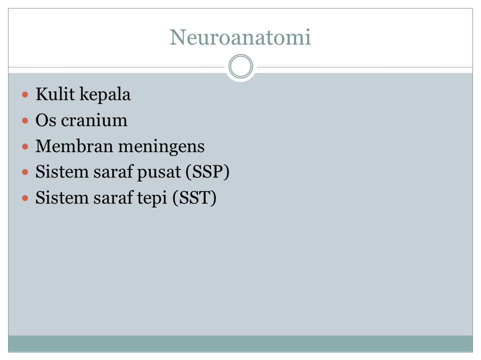 Neuroanatomi Kulit kepala Os cranium Membran meningens