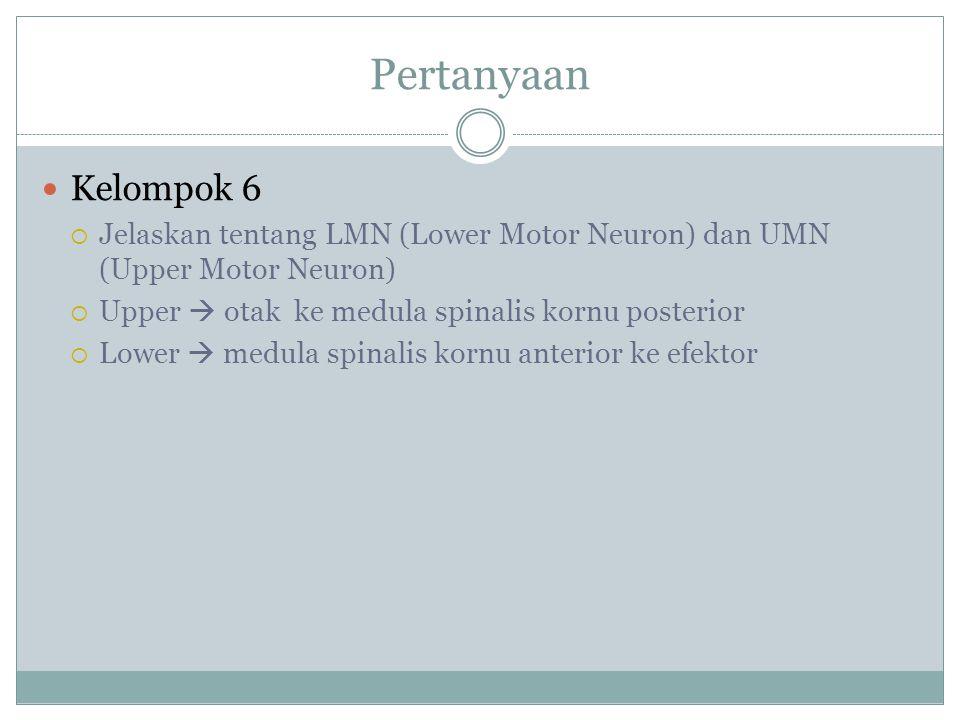 Pertanyaan Kelompok 6. Jelaskan tentang LMN (Lower Motor Neuron) dan UMN (Upper Motor Neuron) Upper  otak ke medula spinalis kornu posterior.