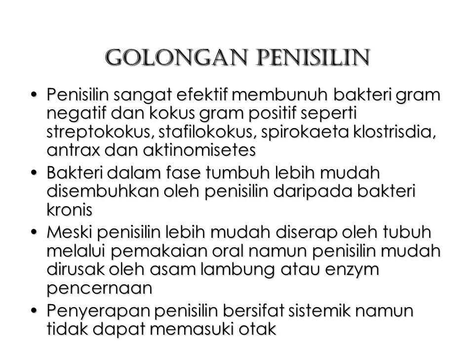 Golongan Penisilin