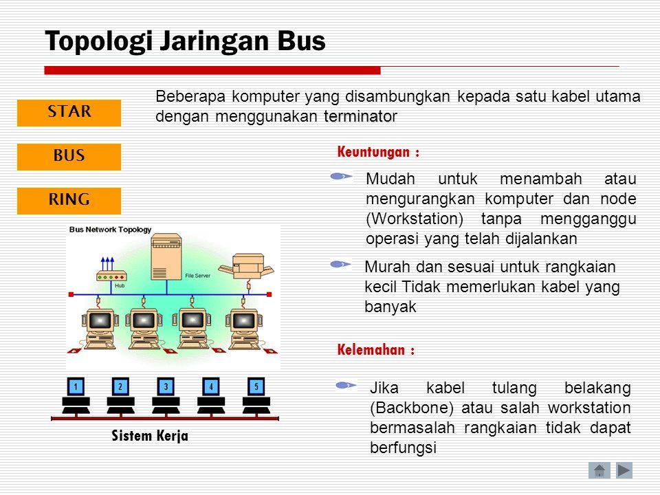 Topologi Jaringan Bus Beberapa komputer yang disambungkan kepada satu kabel utama dengan menggunakan terminator.