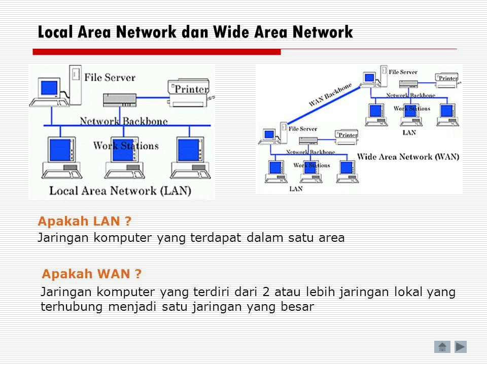 Local Area Network dan Wide Area Network