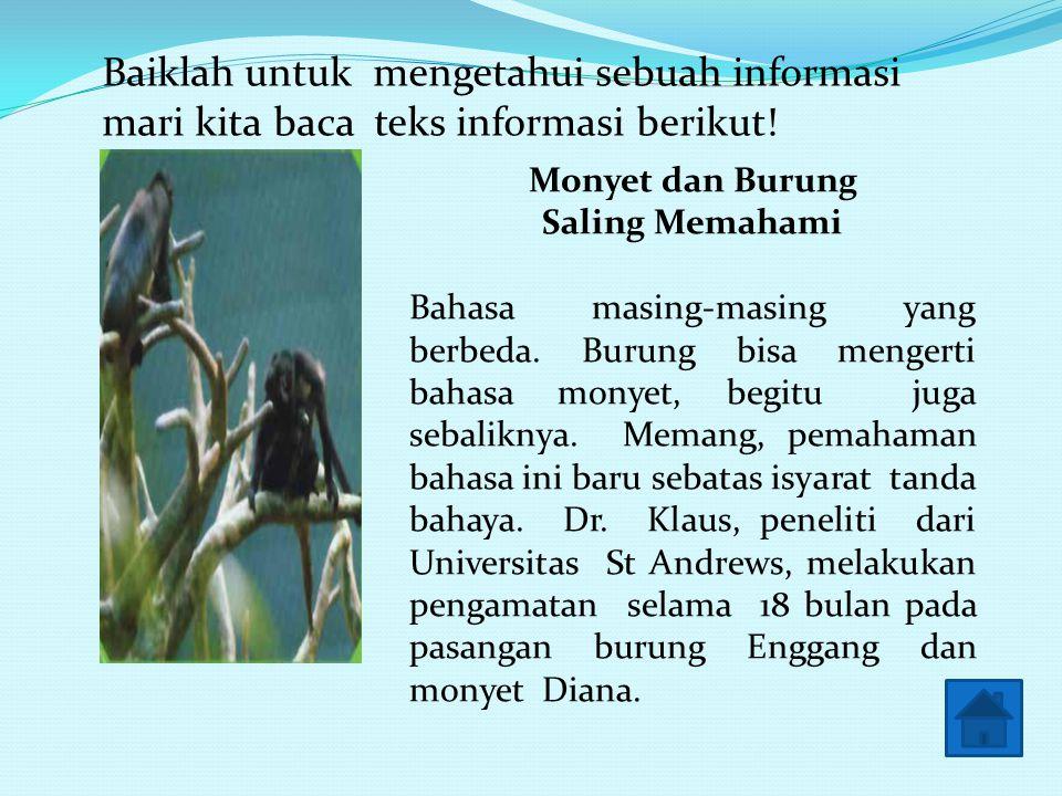 Baiklah untuk mengetahui sebuah informasi mari kita baca teks informasi berikut!