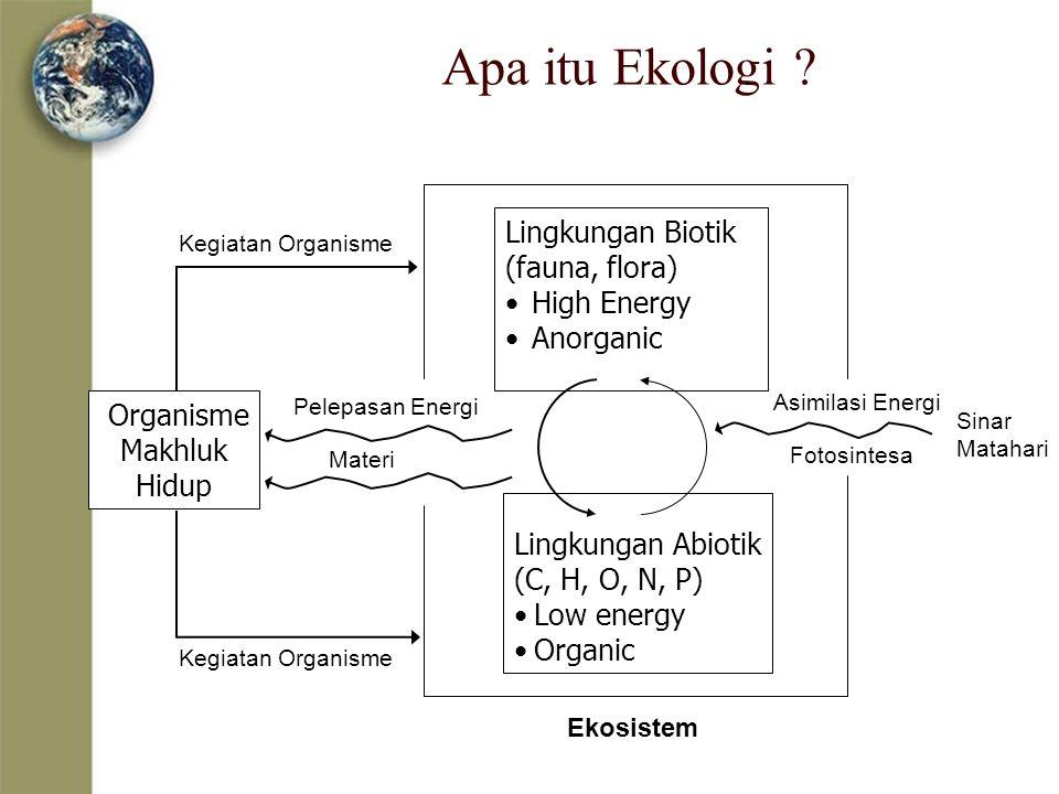 Apa itu Ekologi Lingkungan Biotik (fauna, flora) High Energy