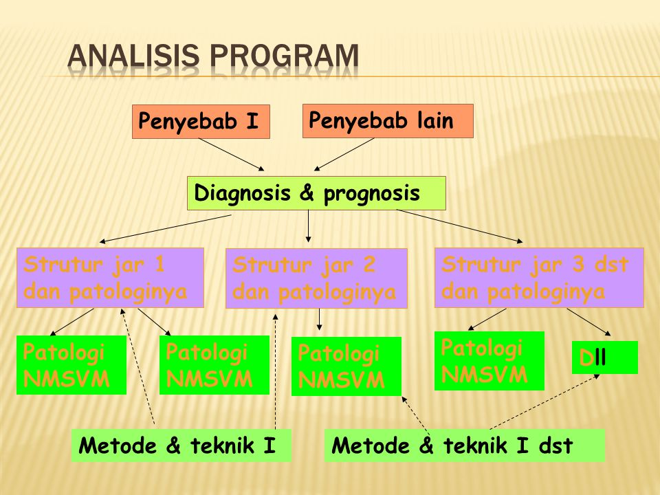 ANALISIS PROGRAM Penyebab I Penyebab lain Diagnosis & prognosis