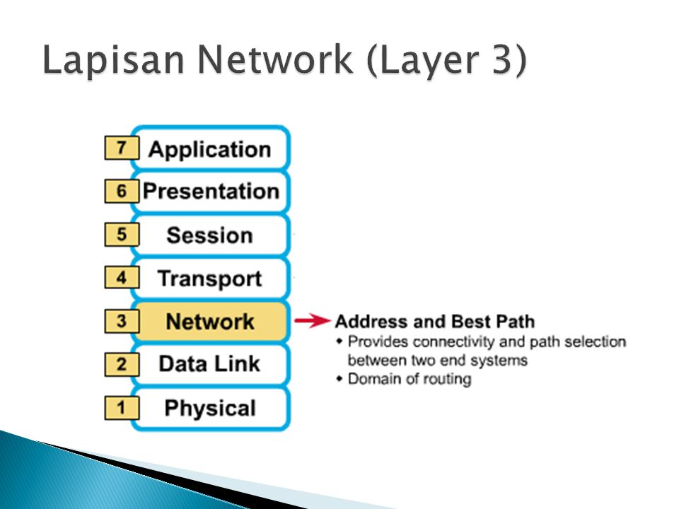 Lapisan Network (Layer 3)
