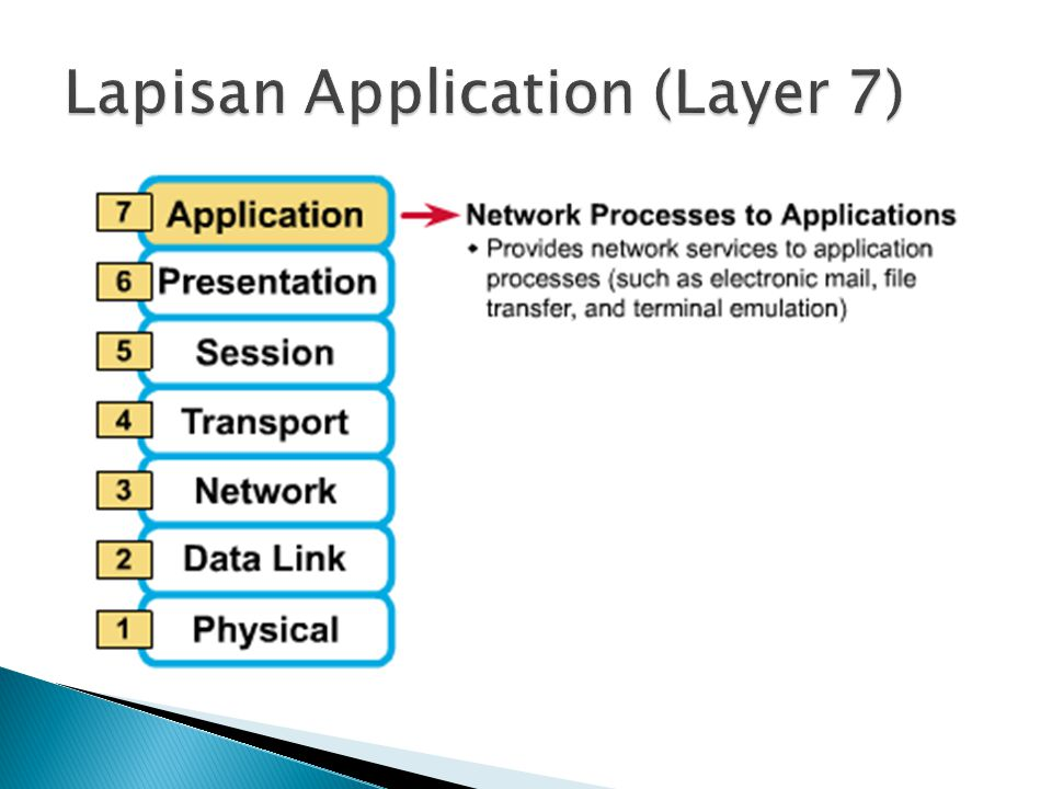 Lapisan Application (Layer 7)