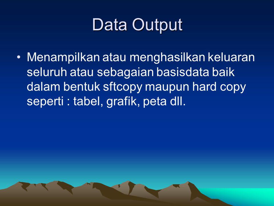 Data Output