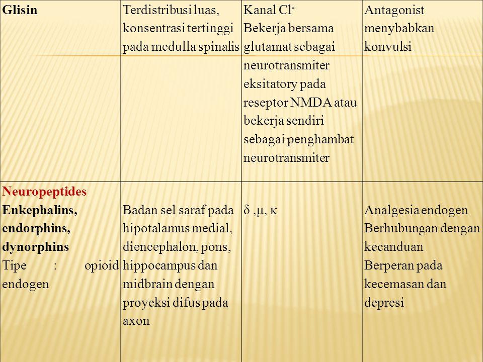 Glisin Terdistribusi luas, konsentrasi tertinggi pada medulla spinalis. Kanal Cl-
