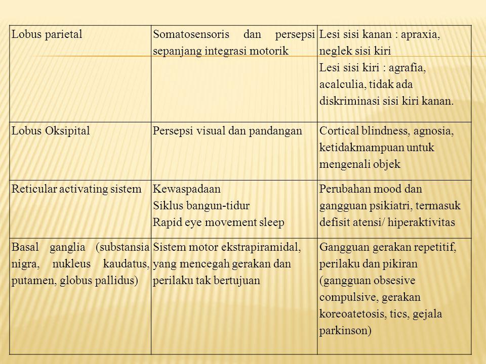 Lobus parietal Somatosensoris dan persepsi sepanjang integrasi motorik. Lesi sisi kanan : apraxia, neglek sisi kiri.
