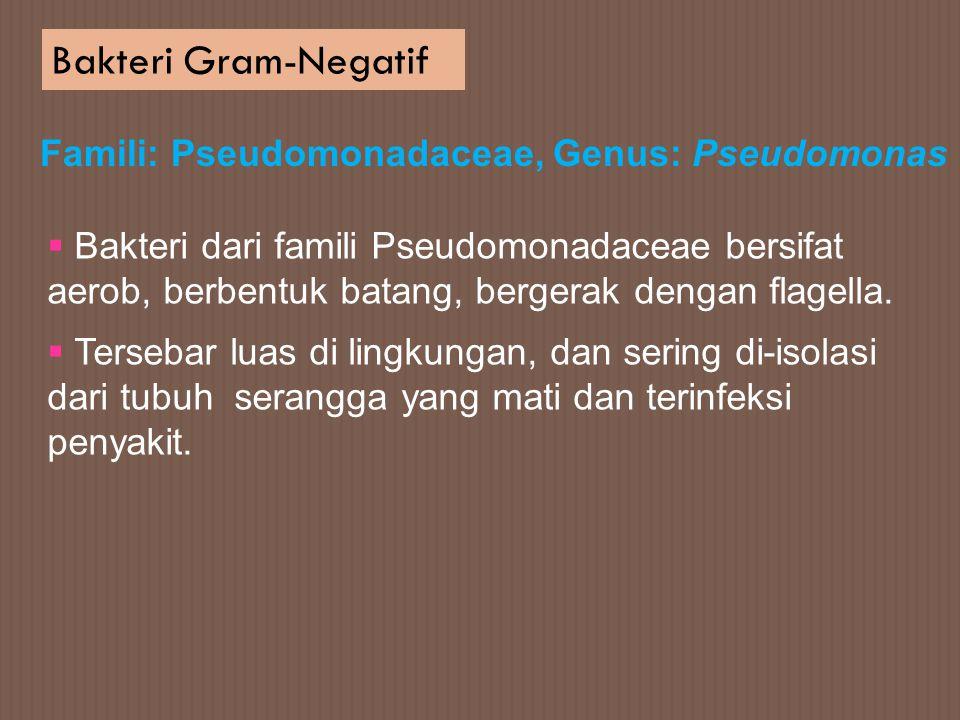 Bakteri Gram-Negatif Famili: Pseudomonadaceae, Genus: Pseudomonas