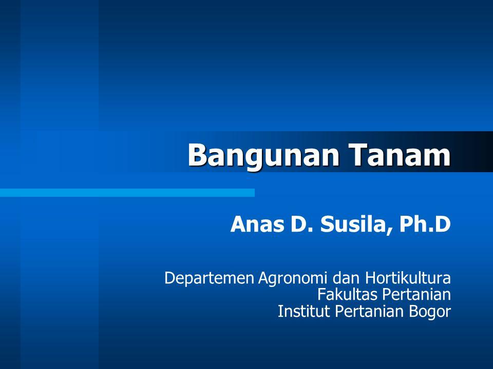 Bangunan Tanam Anas D. Susila, Ph.D