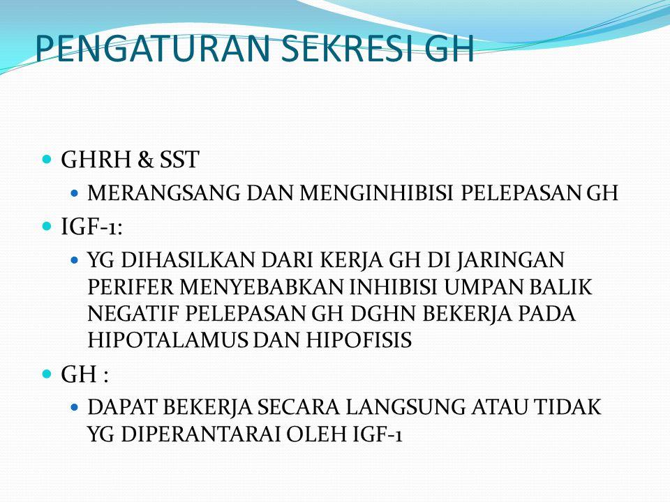 PENGATURAN SEKRESI GH GHRH & SST IGF-1: GH :