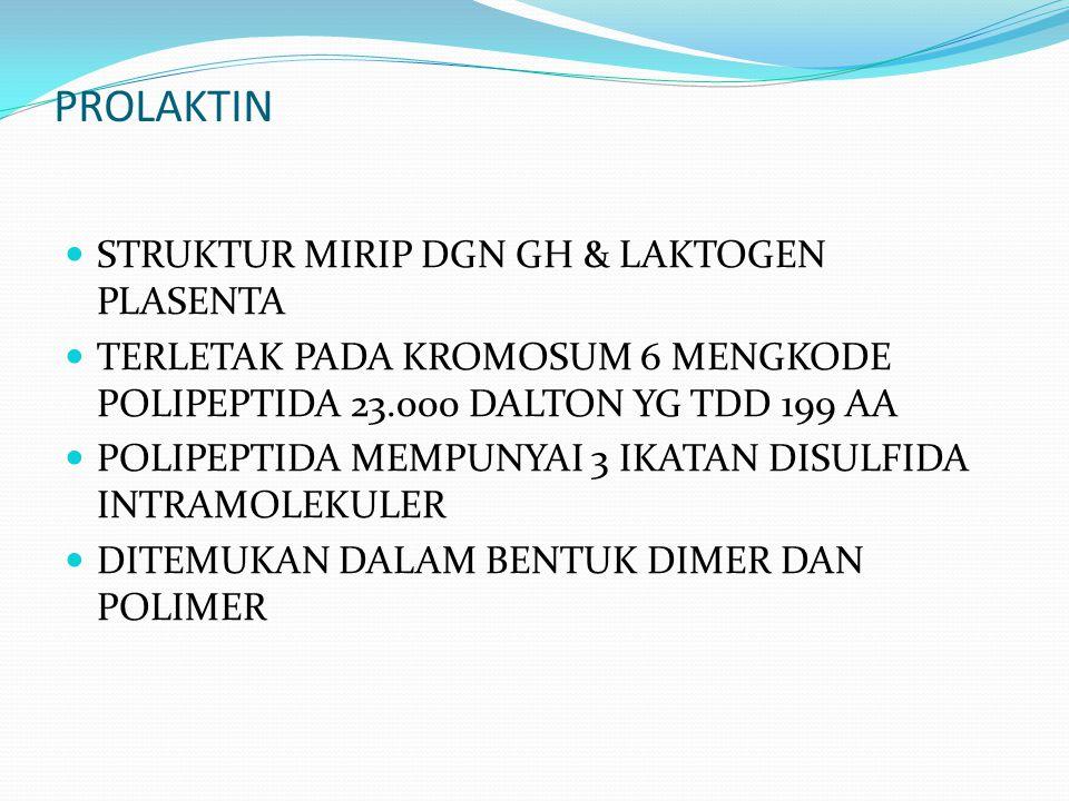 PROLAKTIN STRUKTUR MIRIP DGN GH & LAKTOGEN PLASENTA
