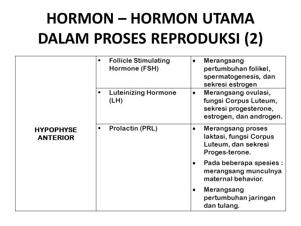 HORMON – HORMON UTAMA DALAM PROSES REPRODUKSI (2)