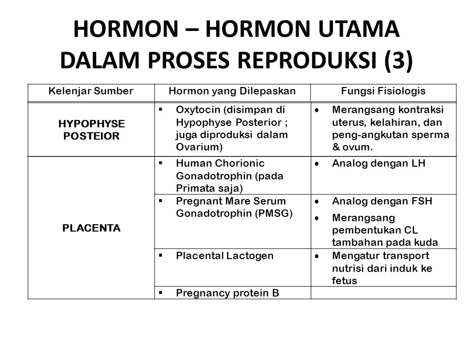 HORMON – HORMON UTAMA DALAM PROSES REPRODUKSI (3)