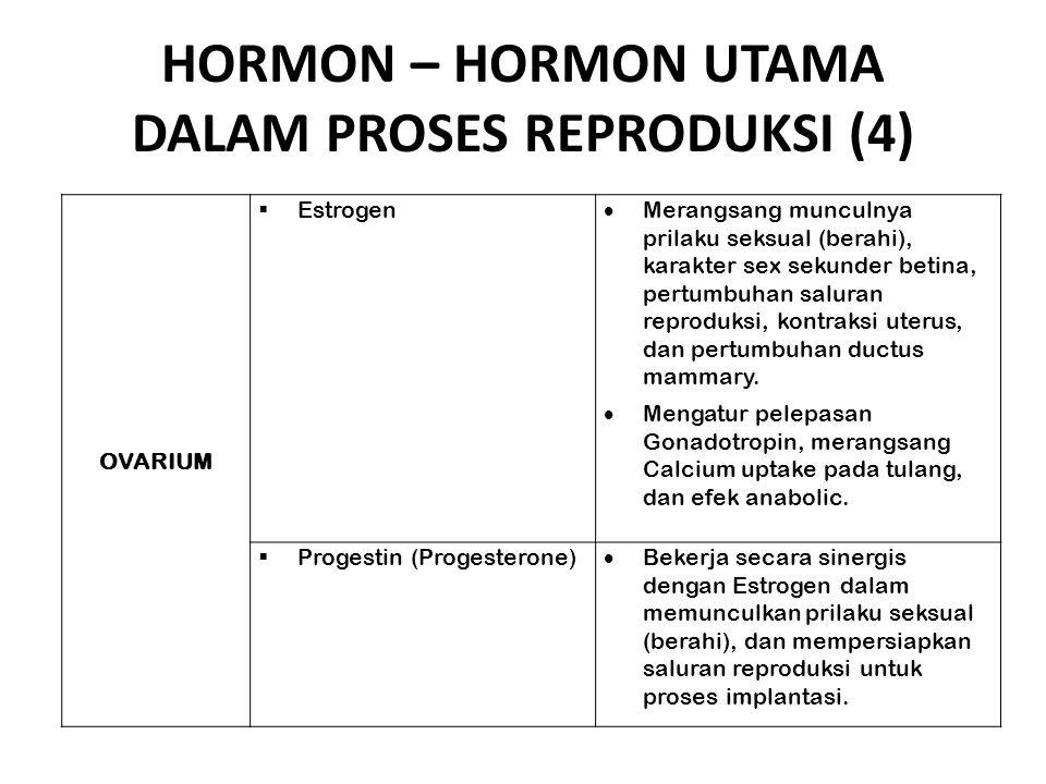 HORMON – HORMON UTAMA DALAM PROSES REPRODUKSI (4)