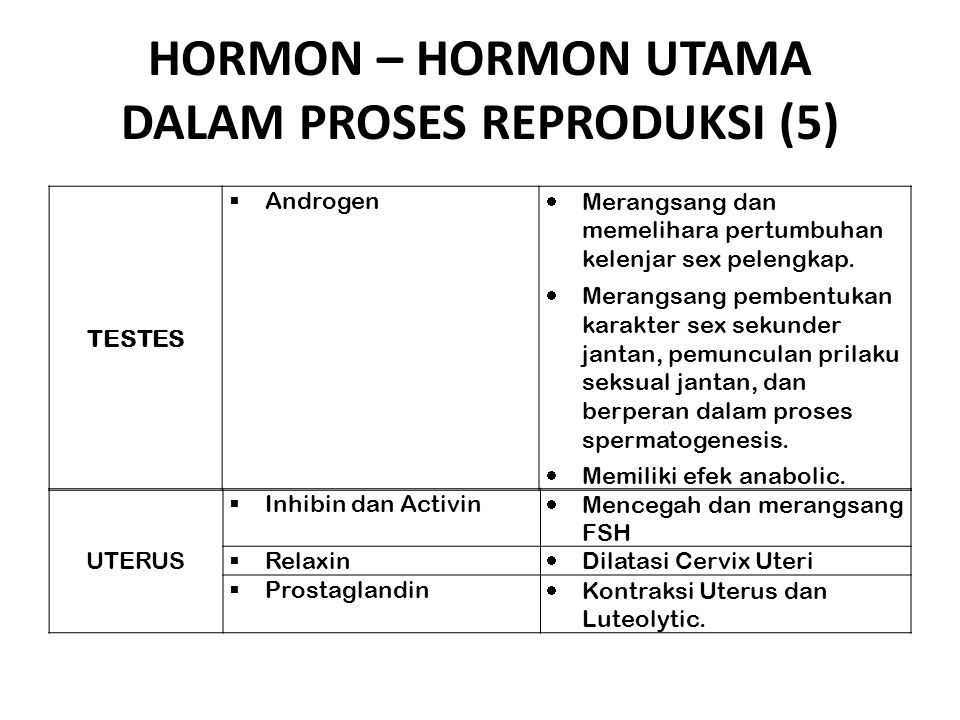 HORMON – HORMON UTAMA DALAM PROSES REPRODUKSI (5)