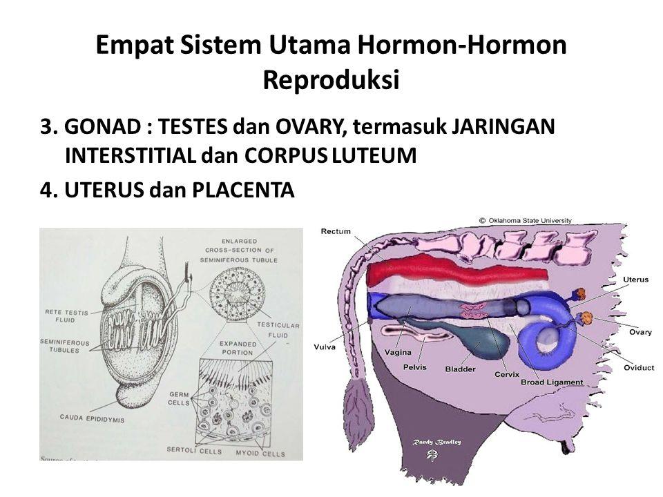 Empat Sistem Utama Hormon-Hormon Reproduksi