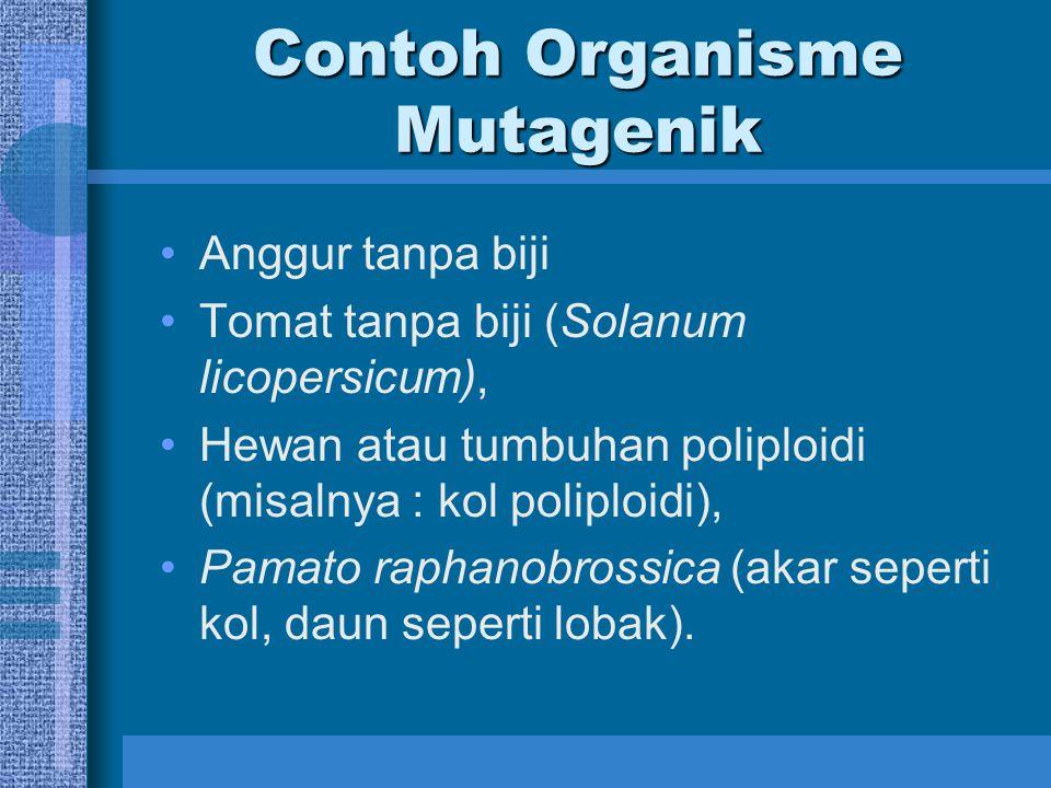 Contoh Organisme Mutagenik